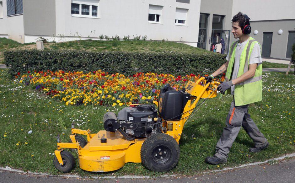 jardinier  Photo YR
