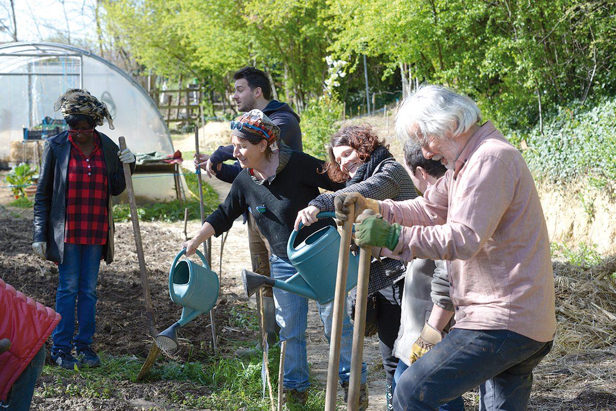 Jardin Ouvrier Le Havre l'agriculture urbaine, ça pousse ! - expressions